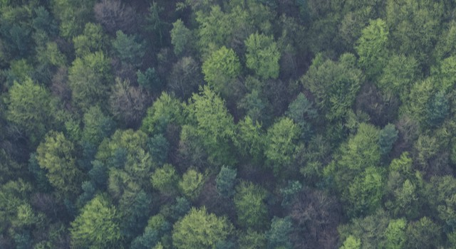 Virginia Land Preservation Tax Credits