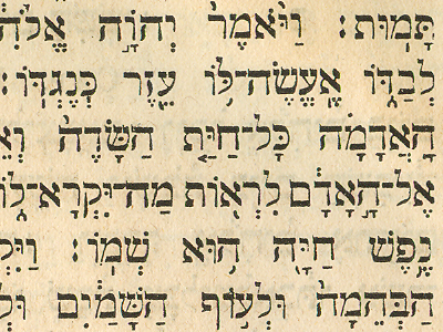 [Image: hebrew_b.png]