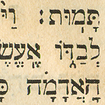 The Talmud Strategy