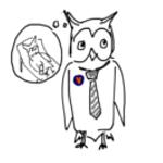 uva wise owl