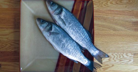 Marotta's 2015 Gone-Fishing Portfolio Calculator