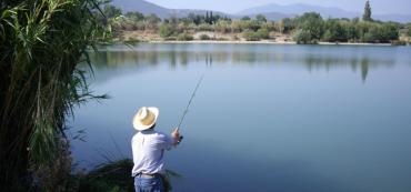 Marotta's 2013 Gone-Fishing Portfolio