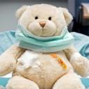 Teddy Bear: The Bear Market of 1957