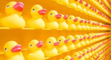 Language Matters: Best Interest vs. Suitability-Plus